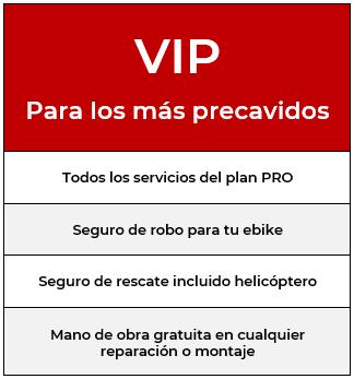 Plan renting ebike VIP